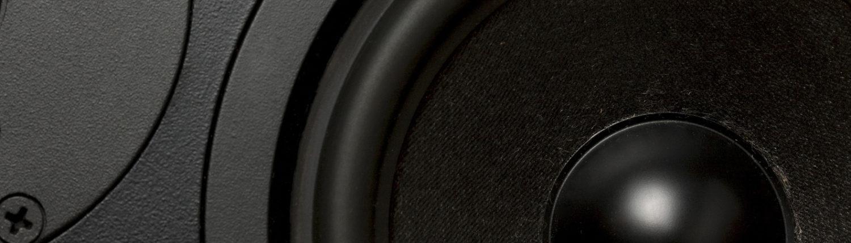 Loudspeaker Cone