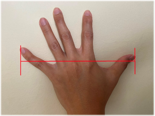 Figure 1 - An open adult palm is usually 8in / 20cm from tip of the thumb to the tip of the pinky.